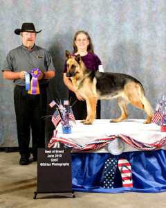 6-12-10 UKC best of breed