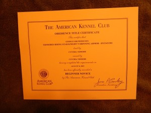 Beginner Novice Title certificate
