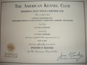 Tank's HIC certificate