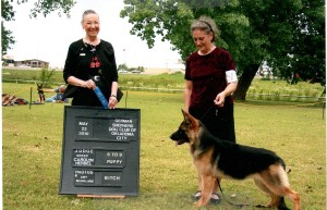 05-22-10 Honey 1st place GSD special OKC
