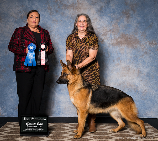 0c548ca60e6 Her half- brother Tank, or UCH Tidmores Rising Star Knight N Shining Armor,  BN, HIC, CGC, was best of breed and took a 3rd place in the herding Group  in the ...