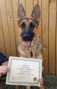 Salem 10-17-15 obedience class completion