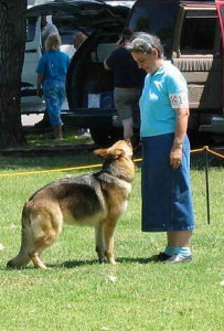 daisy-competing-may2005#2